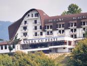 Valea cu pești, Vidraru
